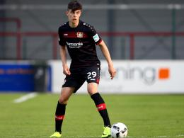 Kai Havertz, Bayer 04 Leverkusen