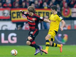 Kampf um den Ball: Leverkusens Tin Jedvaj im Duell mit Christian Pulisic (re.).