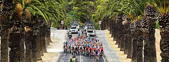 Das Peloton bei der Tour Down Under.